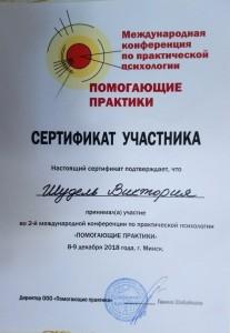 Участие в психологической конференции  в Минске, 2018 г.