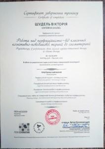 Обучение КПТ у Артура Колаковского. 2019г.