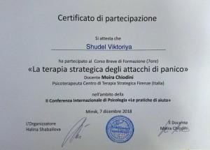 Обучение у Moira Chiodini (Флорентийский госуниверситет) Работа с паникой в краткосрочной стратегической терапии, 2018 г.